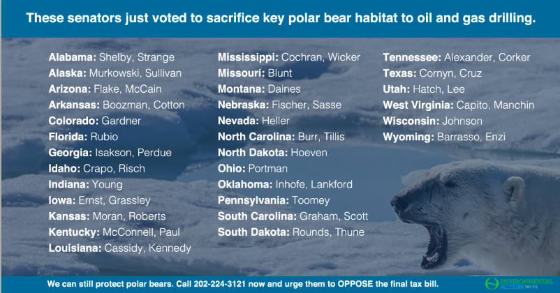 These senators voted to sacrifice key polar bear habitat.