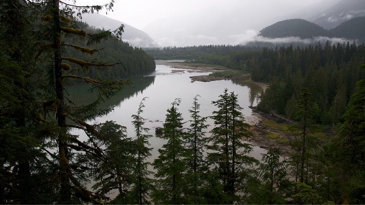 Tongass National Forest (Photo: USDA)