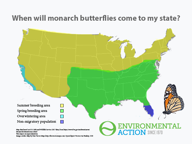 Map: Monarch butterfly distribution, USA