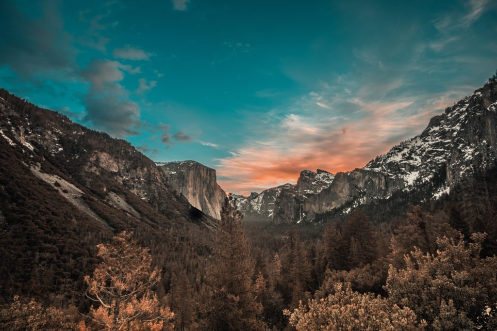 Yosemite National Park (Photo: Christian Vasile, Unsplash)