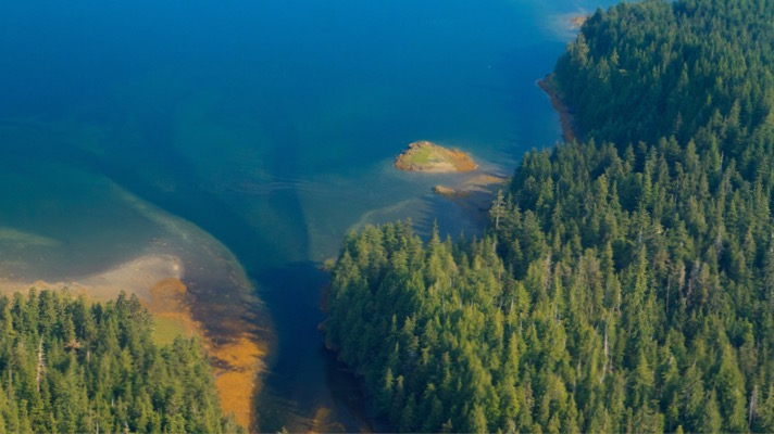 Tongass National Forest (Credit: Alan Wu via Flickr BY 2.0)