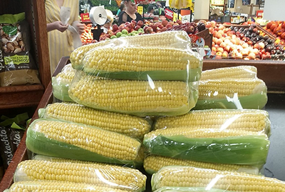 Corn cobs on a grocery store shelf, individually wrapped in plastic wrap.